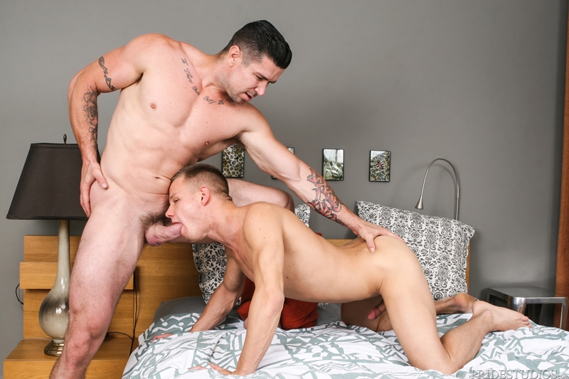 Gay porn hard videos free