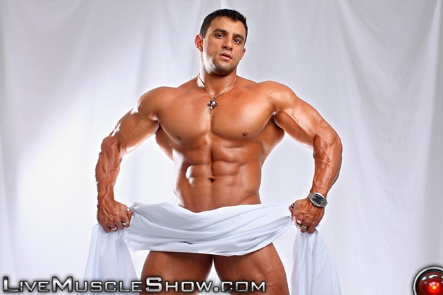 live gay muscle sex